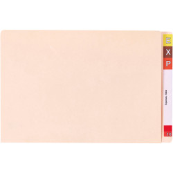 AVERY LATERAL FILES A4 Extra Heavy Weight Buff